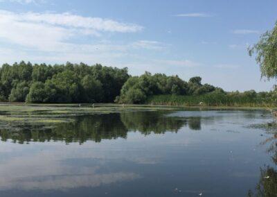 excursii in delta dunarii cu barca pe apa
