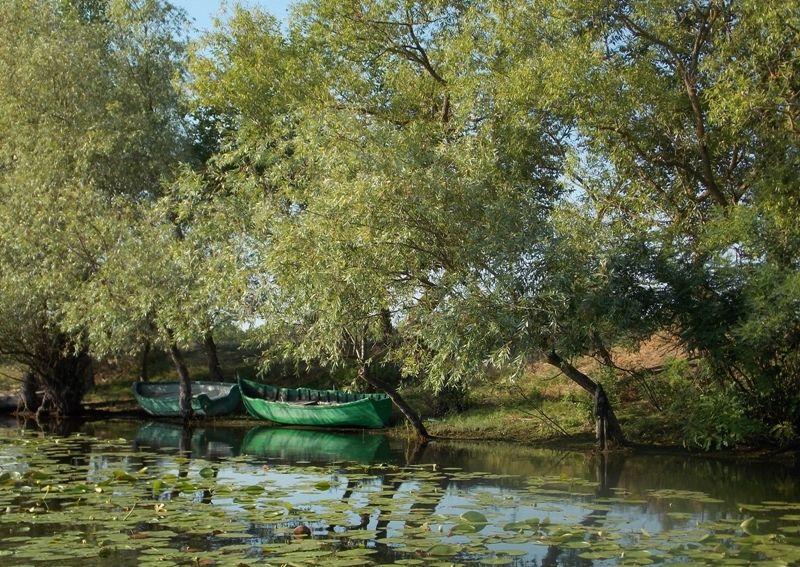 PLimbare in natura pe delta cu barca